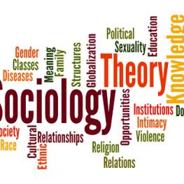 gouni-Sociology