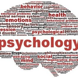 gouni-psychology
