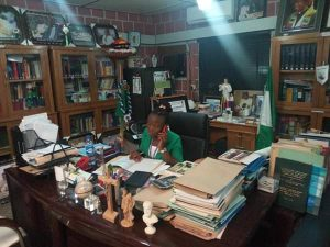 Miss Scholastica Ogbodo - Vice Chancellor For One Day 5